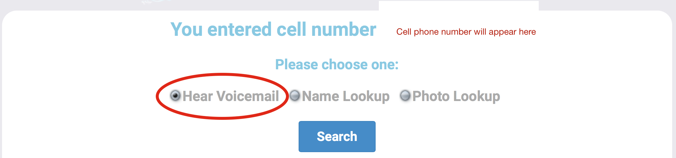 lookup phone number with spydialer